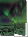A Colorful Aurora Display over a Frozen Lake Poster by Babak Tafreshi