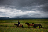 Mongolia: A Horseman Rides across the Mongolian Steppe with Horses in Tow Photographic Print by Ben Horton