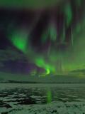 A Colorful Aurora Display over a Frozen Lake Fotografisk tryk af Babak Tafreshi