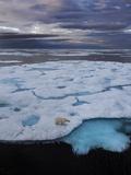A Polar Bear, Ursus Maritimus, on the Edge of Ice Floe in Davis Strait Photographic Print by Jay Dickman