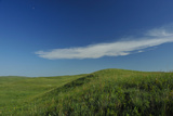 A Wispy Cloud and Blue Sky Above Green Sandhills Photographic Print by Michael Forsberg