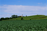 A Small Church Beyond Bright Green Fields Photographic Print by Michael Forsberg