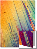 A Photomicrograph, a Picture Taken Through a Microscope, of Salicylic Acid Posters by Cesare Naldi