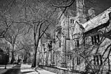 Winter Blizzard at Yale University Photographic Print by Kike Calvo