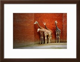 Giraffes Posters by  yuran-78