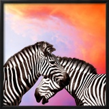 Two Zebras On The Sky Print by  yuran-78