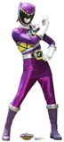 Purple - Power Rangers Dino Charge Lifesize Standup Cardboard Cutouts