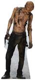 Walker 3 - The Walking Dead Lifesize Standup Cardboard Cutouts