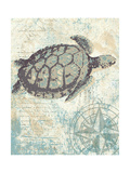 Sea Turtles I Posters by Piper Ballantyne