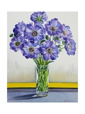 Scabious with Yellow Band Giclee Print by Christopher Ryland