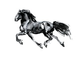Flying Friesian, 2015 Giclee Print by Mark Adlington
