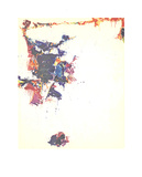 The Whiteness of the Whale Serigraph by Sam Francis