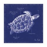 Blueprint Sea Turtle Print van Piper Ballantyne