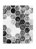 Natural Architecture 1 B&W Posters par Edith Lentz