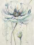Fresh Poppies II Kunstdrucke von Patricia Pinto