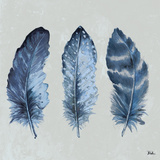 Indigo Feathers I Prints by Patricia Pinto