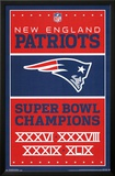 New England Patriots- Champions 2015 Posters