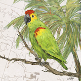 Another Bird in Paradise II Stampe di Julie DeRice