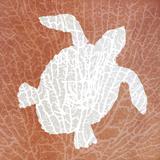 Sealife on Coral III Posters van Julie DeRice