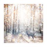 Mystical Forest 2 Plakater af Beau Jakobs