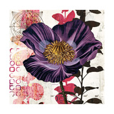 Plum Poppy Story Prints by Melissa Pluch