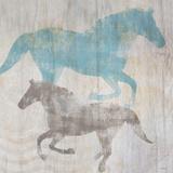 Equine II Prints by Dan Meneely