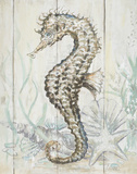 Antique Sea Horse II Prints by Patricia Pinto