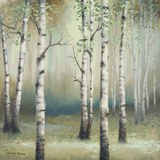 Late September Birch II Print by Michael Marcon