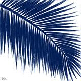 Indigo Barú Palm II Prints by Patricia Pinto