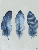 Indigo Blue Feathers I Prints by Patricia Pinto