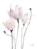 Floral Sway II Prints by Lanie Loreth