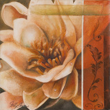 Flor de Loto I Print by Nelly Arenas