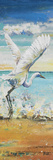 Great Egret Panel I Print by Patricia Pinto