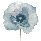 Flower in Blue II (on white) Poster von Patricia Pinto