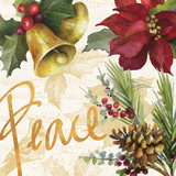 Christmas Poinsettia II Prints by Lanie Loreth