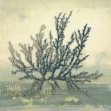 Coastal Coral I Poster by Lanie Loreth