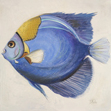 Little Fish III Poster von Patricia Pinto