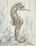 Antique Sea Horse I Poster by Patricia Pinto