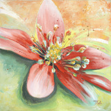 Tropische Pracht I Poster von Patricia Pinto