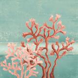 Teal Coral Reef II Kunstdrucke von Patricia Pinto