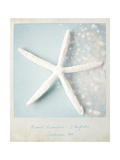 Beach Memories Starfish Posters by Susannah Tucker