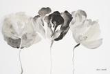 Trio in Light Prints by Lanie Loreth