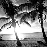 BW Bimini Sunset I Prints by Susan Bryant