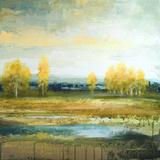 Marsh Lands II Prints by Michael Marcon