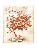 Coral No.5 Sketchbook Art by Angela Staehling