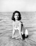 Suddenly, Last Summer Photo