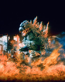 Godzilla Photo