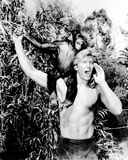 Tarzan, the Ape Man Photo