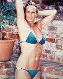 Linda Evans Photo