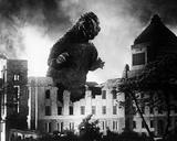 Godzilla, rey de los monstruos Fotografía